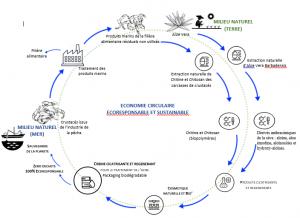 Cycle de Fabrication de SEACATRIX